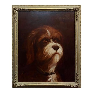 19th Century Portrait of a Fluffy Dog - Oil Painting For Sale