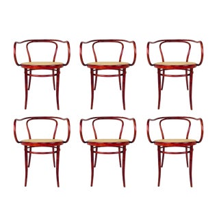 Set of Six Thonet Bentwood Armchairs For Sale