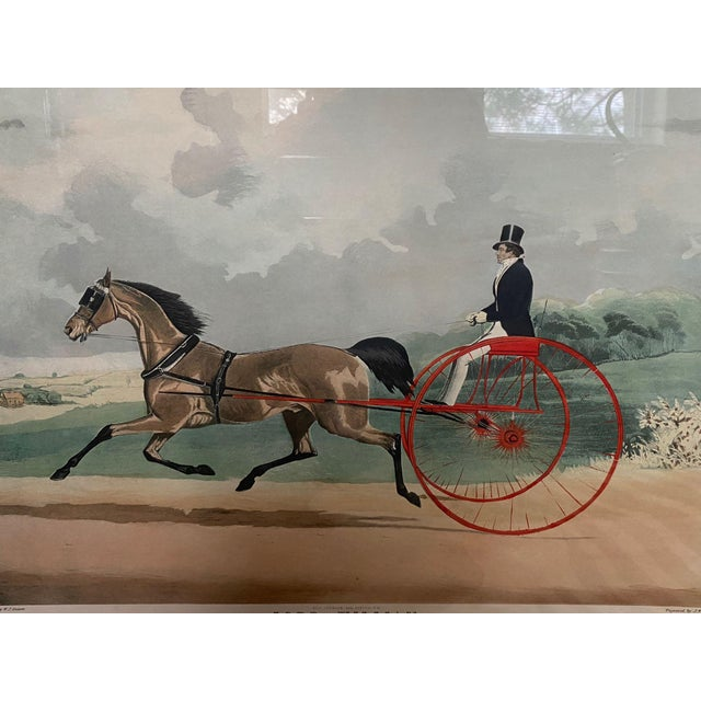 "Figurative ""Lord William"" Trotting Horse 1845 Aquatint For Sale - Image 3 of 13"