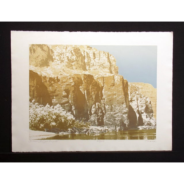 """Realism Paula Crane """"Below Bright Angel"""" Signed & Numbered Art Etching of Canyons For Sale - Image 3 of 6"""