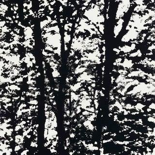 Sample - Schumacher Woodland Wallpaper in Night Preview