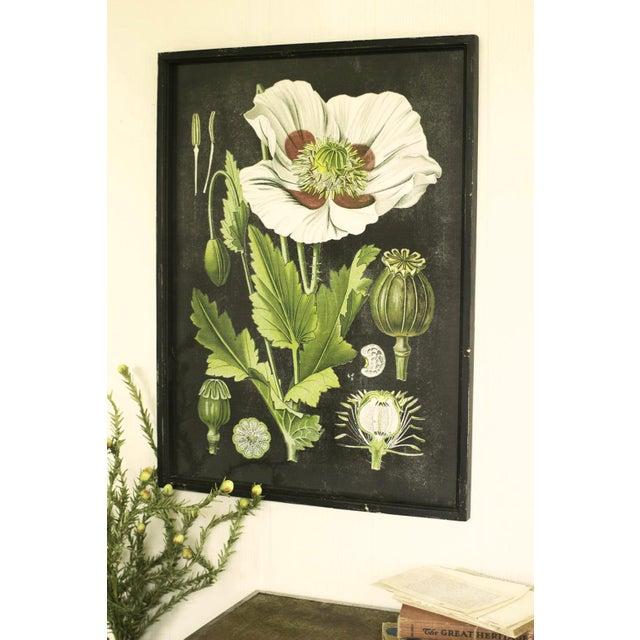Framed White Flower Botanical Print - Image 4 of 4