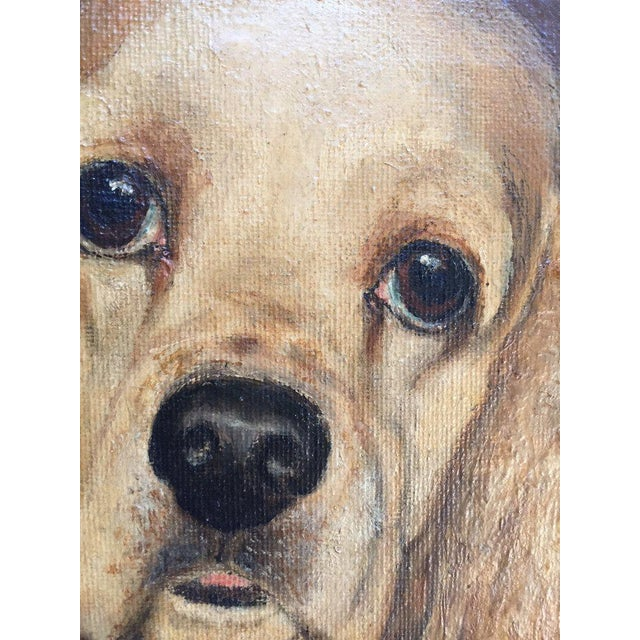 Yellow Vintage Mid-Century Cocker Spaniel Portrait Oil Painting For Sale - Image 8 of 13