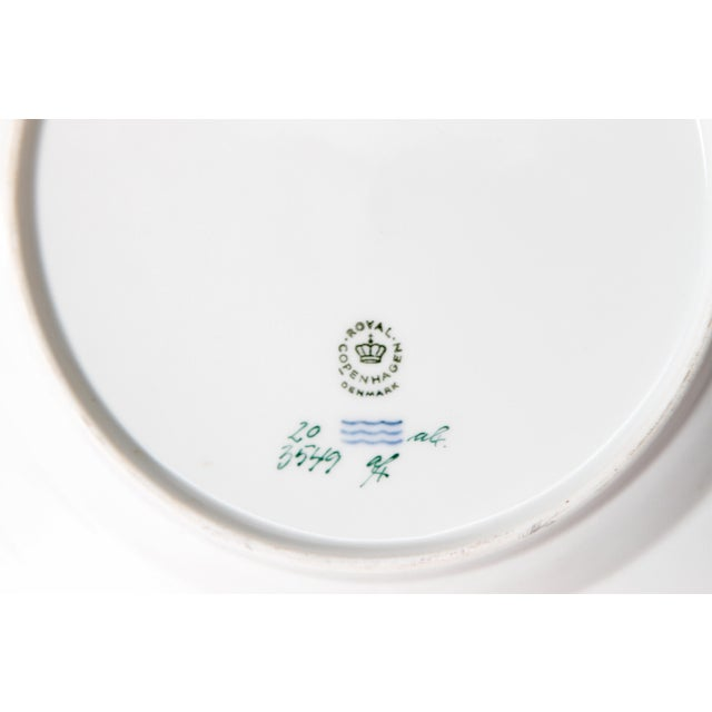 Pair of Flora Danica Plates by Royal Copenhagen #20/3573 and #20/3549 For Sale - Image 11 of 13