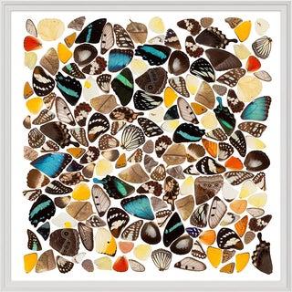 Metamorphic, Square, Framed Artwork For Sale