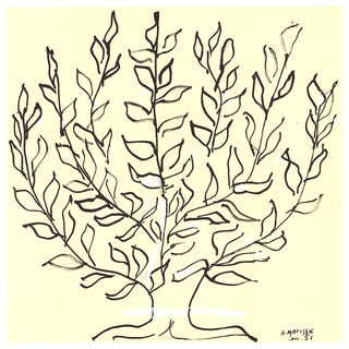 Henri Matisse-Le Buisson - Platane-2016 Lithograph For Sale
