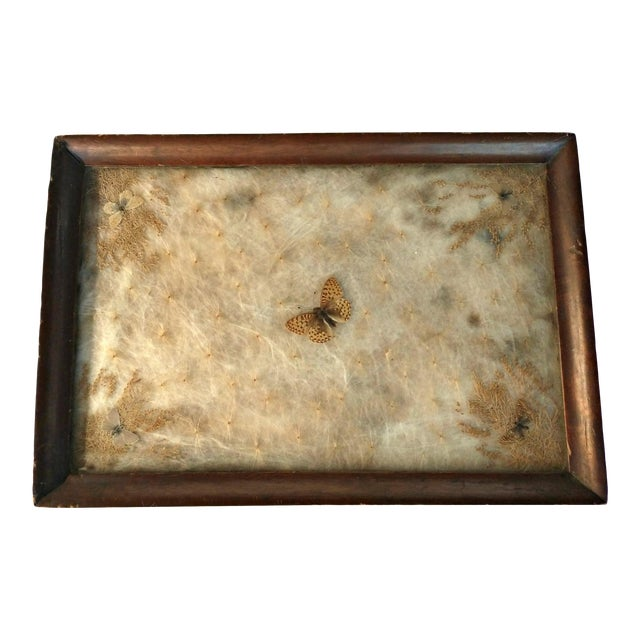 Antique Arts & Crafts Milkweed & Real Butterflies Serving Tray For Sale