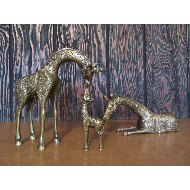 Vintage Brass Giraffe Family - Set of 3 - Image 2 of 6