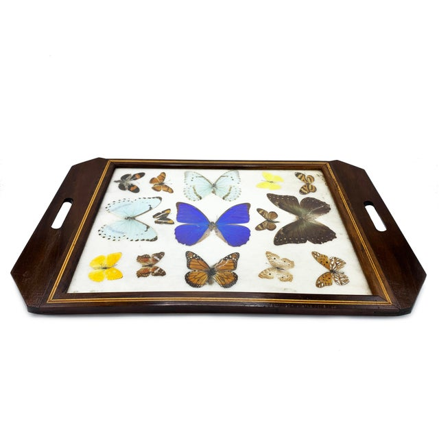 Vintage Mid-Century Large Butterfly Tray, Handmade For Sale - Image 4 of 4