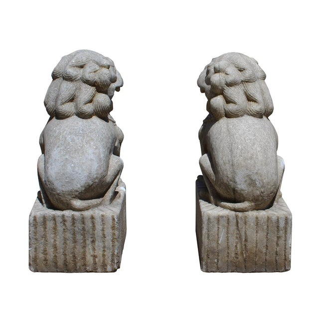 Chinese Distressed Marble Stone Fengshui Foo Dogs Statues - a Pair For Sale In San Francisco - Image 6 of 7