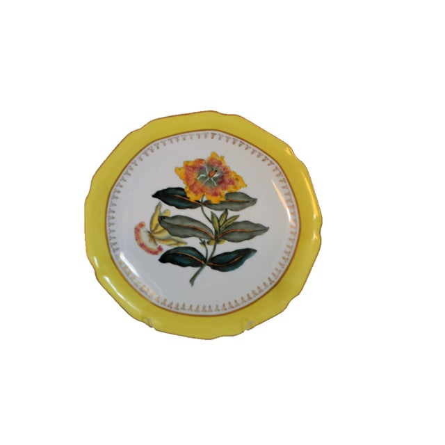 Chelsea House Inc Chelsea House Hand Painted Floral Botanical Yellow Gilt Porcelain Plates - Set of 4 For Sale - Image 4 of 7