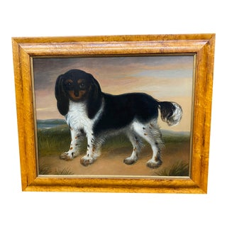19th Century Cavalier King Charles Spaniel For Sale