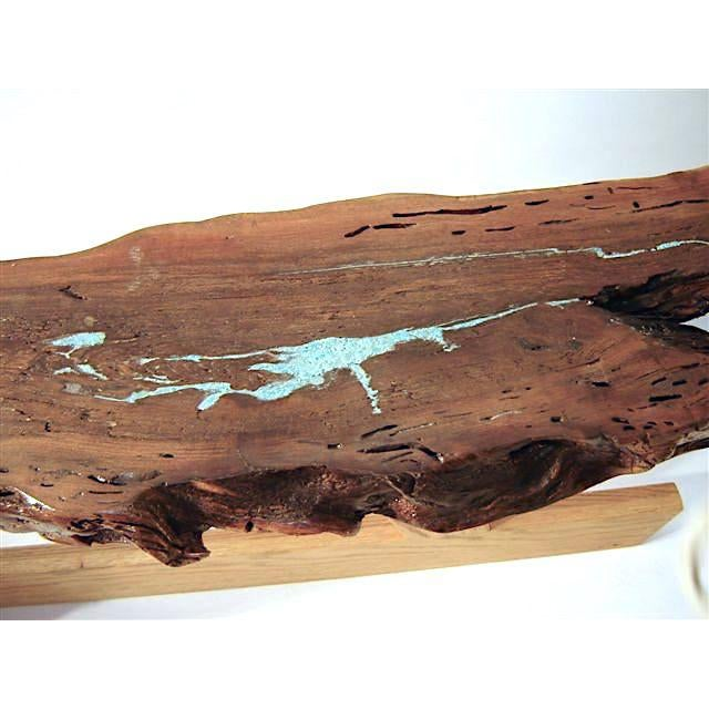 2010s Organic Modern Live Edge Mesquite Slab Coffee Table For Sale - Image 5 of 7